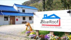 Blue Roofの外観の画像